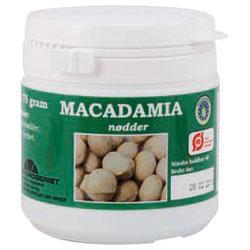 Macadamia nødder store økologisk 75 gr fra Naturdrogeriet