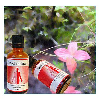 Rod Chakra feminin 50ml fra Holistica-Medica