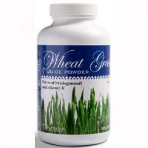 Wheat Grass Juice Powder (100 gr)