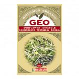 Solsikkefrø til spiring økologisk 90gr GEO