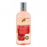 Shampoo Pomegranate 250ml fra Dr. Organic