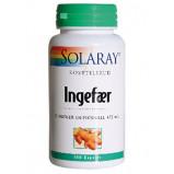 Ingefærrod 550 mg 100 kap fra Solaray