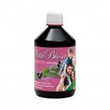 Vita Biosa - Aronia Økologisk 500 ml