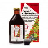 Salus Kräuterblut Floradix 500 ml