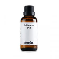 Echinacea D12, 50 ml.