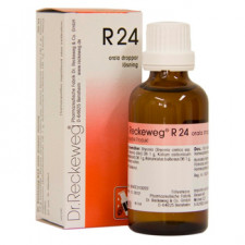 Dr. Reckeweg R 24, 50 ml.