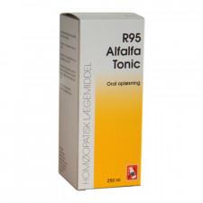 Dr. Reckeweg R 95 (250 ml)
