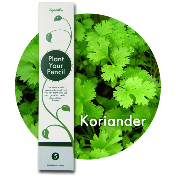 Image of   5 stk. Sprout Blyanter (Koriander)