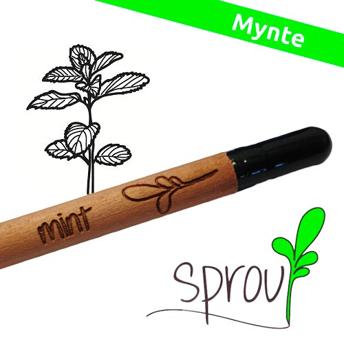 Image of   Sprout (Mint)
